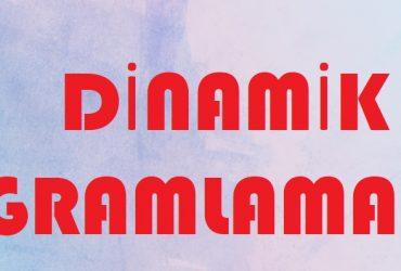 Dinamik programlama nedir