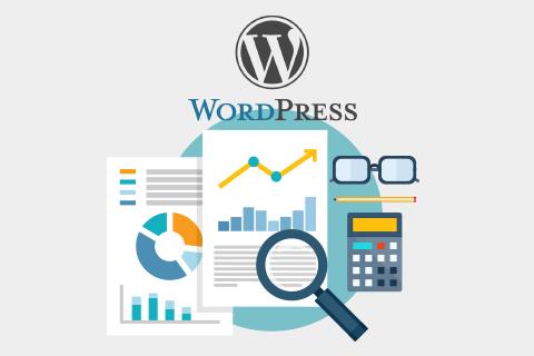 WordPress sayaç eklentisi nasıl kurulur
