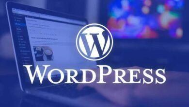 Photo of Ağustos Ayının Ücretsiz Premium WordPress Temaları